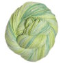 Cascade Sunseeker Multis Yarn - 121 Greens