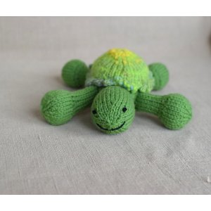 Susan B. Anderson Patterns - Turtle Pattern