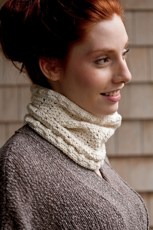 Cascade Venezia Worsted Leyla Cowl Kit - Crochet for Adults