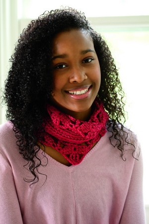 Blue Sky Fibers Worsted Hand Dyes Blushing Erin Neck Warmer Kit - Crochet for Adults