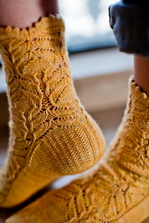 Juniper Moon Farm Tenzing Chrysanthemum Frutescens Sock Kit - Socks