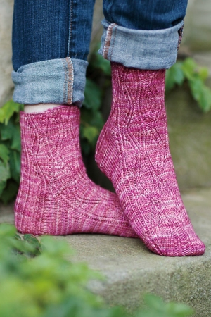Malabrigo Arroyo Bunodes Crassicornis Sock Kit - Socks