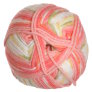 Plymouth Dreambaby DK Paintpot Yarn - 1414 Watermelon Mix