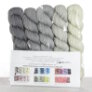 TSCArtyarns Zara Transitions Yarn - 5 Shades of Grey