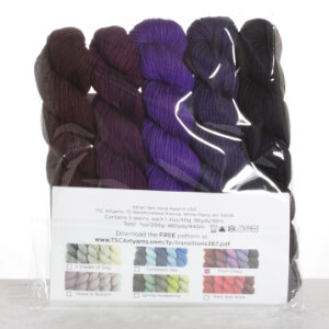TSCArtyarns Zara Transitions Yarn - Plum Crazy