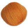 Cascade 220 Superwash - 0253 - Desert Sun