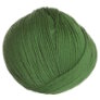 Cascade 220 Superwash - 0254 - Mint Green