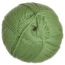 Cascade 220 Superwash Merino Yarn - 17 Green Tea
