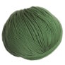 Cascade Longwood Yarn - 49 English Ivy