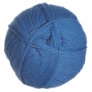 Plymouth Galway Worsted Yarn - 116 Teal