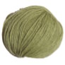 Classic Elite Arietta Yarn - 4981 Bamboo Shoot