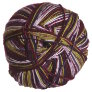 Wisdom Yarns Allegro Yarn - 804 Grape Sonata