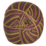 West Yorkshire Spinners Signature 4 Ply - 811 Passion Fruit Cooler