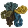 Lorna's Laces String Quintet Packs Yarn - '16 October - Newt's Suit