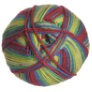 Universal Yarns Adore Colors - 208 Primary Print