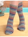 Berroco Comfort Sock Speed Bump Sock