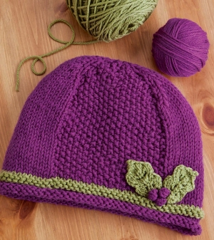 Cascade 220 Holly Hat Kit - Hats and Gloves