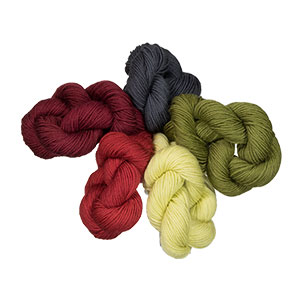 Lorna's Laces String Quintet Packs Yarn - '17 December - Zombie Xmas BBQ