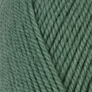 Plymouth Encore Worsted - 9401 Greenstone