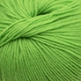 Cascade 220 Superwash - 261 Vibrant Green