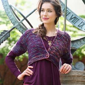Malabrigo Book 11: Aniversario Patterns - Clarkson - PDF DOWNLOAD Pattern
