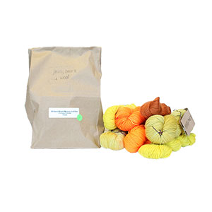Jimmy Beans Wool DK/Sport Weight Mystery Grab Bags Yarn - Oranges/Yellows