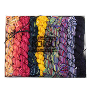Koigu Pencil Box Yarn - Dance Club