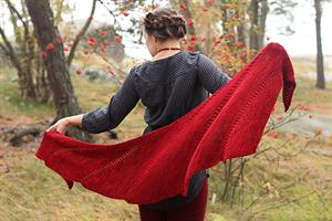 Malabrigo Arroyo Fly Forward Shawl Kit - Scarf and Shawls